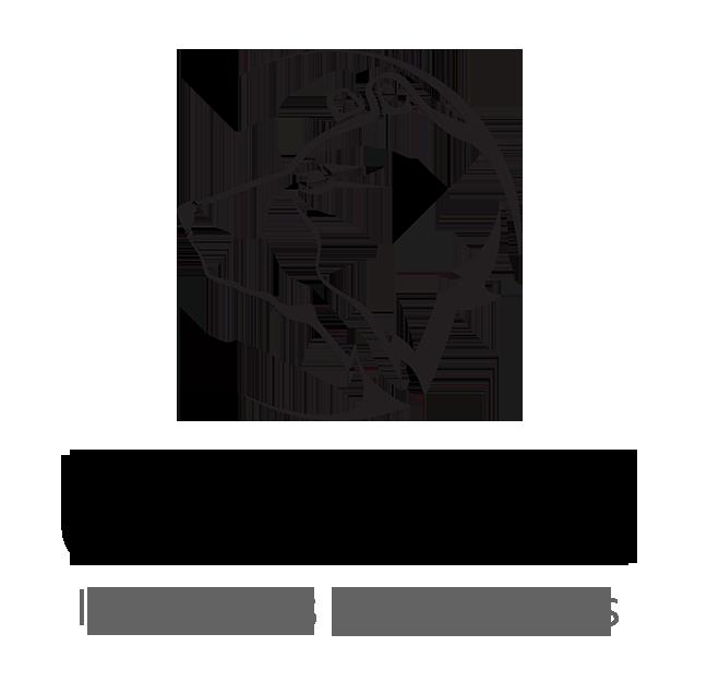 logo_imgver